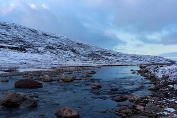 Bilutleie Narvik
