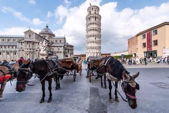 Biluthyrning Pisa